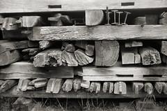 Material 2 (Dörte Krell) Tags: bw film monochrome folder largeformat gf xenar schneiderkreuznach hessenpark scharzweiss sheetfilm planfilm patentetui kwdresden