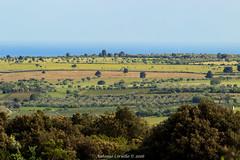 Strati colorati (Antonio Ciriello) Tags: italy verde green nature canon landscapes italia natura tamron puglia 70300 apulia 600d massafra cernera 70300vc eos600d canoneos600d tamron70300vc rebelt3i 70300vcusd citignano