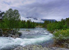 River flow trough a green landscape. (janrs7) Tags: summer mountain mountains green nature norway river landscape norge july valley rauma wildnature riverflow nordiclandscape sonyilc6000 sonyemount1650mm