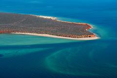 Shark Bay WA - DSC3195