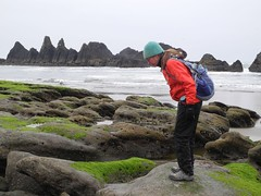 2016-04-27_DSCN5281 (becklectic) Tags: beach oregon pacificocean oregoncoast tidepools amie sealrock 2016
