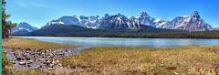 Waterfowl Lake, Banff National Park, Alberta, Canada - psi(5)179-193 (photos by Bob V) Tags: panorama mountains rockies banff rockymountains mountainlake banffnationalpark waterfowllake canadianrockies banffalberta banffpark banffalbertacanada mountainpanorama