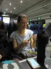 knitting on the train to marseille (squeezemonkey) Tags: france train knitting carriage passenger traveling waterbottle tgv