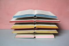 pile of books (virginhoney) Tags: sculpture studio books pile colored organized atelier booklover