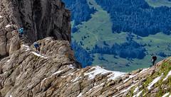 170A3207 (Ricardo Gomez A) Tags: sntis mountain montaa berg nieve schnee snow landscape paisaje landschaft schweiz switzerland suiza alpes alps alpen canon canons eos 5ds ngc aire lib