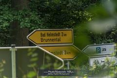 Lappwald (photomoments-mk) Tags: deutschland geografie helmstedt lappwald niedersachsen wegweiser geography germany lowersaxony thing what