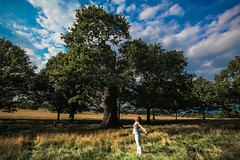 BREATH (Rober1000x) Tags: europa europe 2016 londres london uk england park richmond nature tree summer verano sky clouds breath life