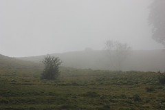 IMG_1623 (Serena Rebechi) Tags: matanna montagna toscana vetta natura