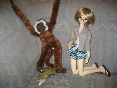 Confrontation 003 (EmpathicMonkey) Tags: bjd bluefairy olive toby happy monkey photo story ball jointed dolls toys