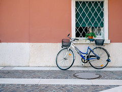 Bicycle #020 (Peter.Bartlett) Tags: plantpot cobbles manhole vsco lunaphoto shutter urban window wall m43 kodakportra160emulation cycle peterbartlett urbanarte bike flower olympusomdem1 microfourthirds bardolino veneto italy it