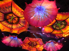 Le Rve (kenjet) Tags: lerve theatre theater ceiling pattern color colors pretty beautiful vegas show lasvegas nevada