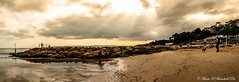 14379618_10155205965865744_4422168173047696470_o (Mark Marschall) Tags: branksome beach sun sand goldenglow sea nikon d3000 rocks groyne landscape