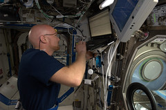 Circadian Rhythms (Astro_Alex) Tags: science circadianrhythms