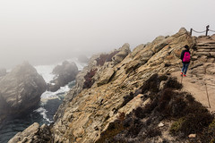 Point Lobos, October 2016 #1 (satoshikom) Tags: canoneos60d canonef1635mmf28liiusm pointlobosstatenaturalreserve allanmemorialgrove californiastateparks californiacoast weekend