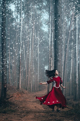 Insane (Gabriel Venzi) Tags: fineart tales girl woods forest magic surreal snow photoshop