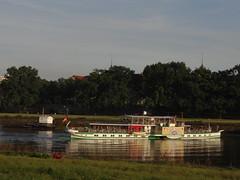 Dresden-0108_1 (pischty.hufnagel) Tags: dresden elbe dampfschiff dampfschifffahrt kurort rathen wende schaufelraddampfschiff schaufelraddampfer