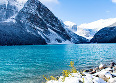October Snow at Lake Louise (mikeyb.0101) Tags: lakelouise lake louise alberta canada banff snow nature outdoor landscape
