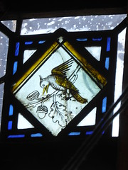 Bird & Acorns (Aidan McRae Thomson) Tags: york minster cathedral yorkshire stainedglass window medieval