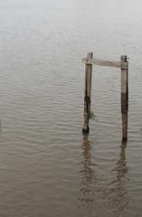 Minimalismo reflejado (Lady Smirnoff) Tags: reflejo reflection agua water palos sticks rio river
