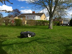 Nu jobbar versten. (Patrick Strandberg) Tags: spring sweden vr iphone stergtland lawnmover grsklippare vikingstad iphone6