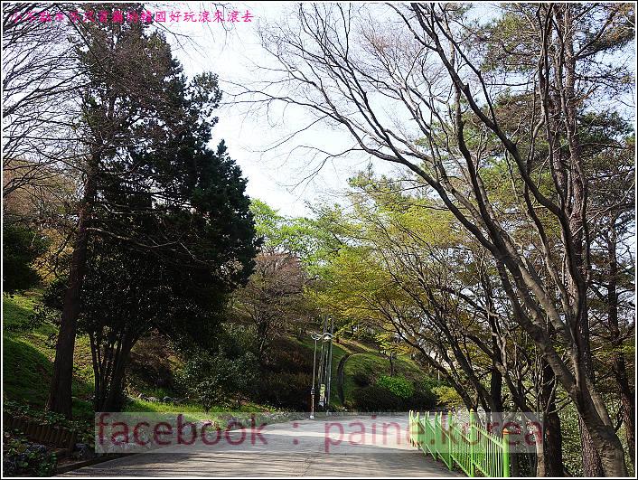麗水海上纜車與紫山公園 (67).JPG