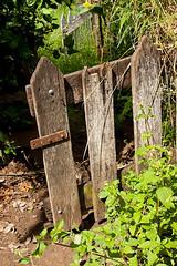 Portão do Jardim