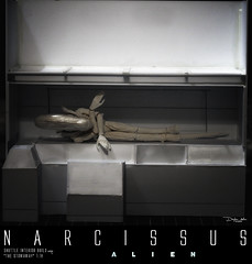 NARCISSUS29B (sith_fire30) Tags: sculpture building art scott miniature big model allen action alien aves ripley shuttle figure beast custom dayton diorama giger narcissus chap hrgiger prometheus sculpt styrene ridley xenomorph nostromo fixit sithfire30 covneant