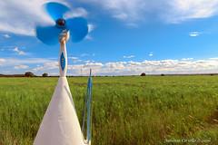 Muovendo le nuvole (Antonio Ciriello) Tags: sky nature grass clouds canon nuvole wind ears natura tokina erba cielo prato vento weathercock girandola spighe 1116 600d massafra cernera tokina1116 eos600d canoneos600d