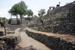 - Ruinas de Cantona