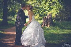 Hochzeit Johannes und Jenny (apics_chris) Tags: trees wedding forest groom bride kissing couple honeymoon princess paar hochzeit wald bume kuss prinz anzug heirat waldweg heiraten braut brutigam kleid prinzessin