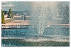 Un peu de fraicheur  (bernard78br) Tags: 5dsr 70200exsigma canon castleofversailles chateaudeversailles dxo eos grandeseaux lightroom6 logicieltraitementimages objectifsreflex photographie sigma versailles ville