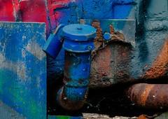 locked (FotoTrenz NRW) Tags: blue red metal graffiti alt details struktur panasonic blau schloss rost rohr holz verrostet locked bunt farben abstrakt urbex verschlossen