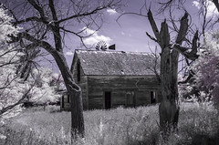 What Once Was (unknown quantity) Tags: clouds grass deadtrees infrared weathered windmill brokenroof openwindows shadows hss abandonedhouse barewood fadedpaint