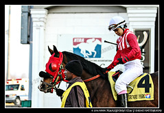 IMG_9586 (femalejockeys) Tags: femalejockeys turfway park female athletes horse racing horses thoroughbred kentucky derby