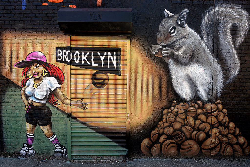 The World's Best Photos of brooklyn and ftr - Flickr Hive Mind
