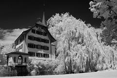 Schloss Landshut (ktmdriver74) Tags: infrarot schloss wasserschloss sony a100 hoya r72