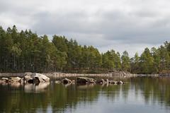 Wald und Wasser (janakintrup) Tags: schweden vrmland stora gla glaskogen kanu kanutour urlaub august canon natur wasser outdoor baum bume wald stein steine ufer spiegelung wolken grn grau see seeufer