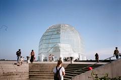 Kasai Rinkai Park, Japan (joshua alderson) Tags: ae86 r32 odaiba skyline japan tokyo fujifilm fuji klassew analog 35mm film kasai rinkai park edo museum natura 1600