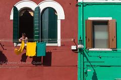 LESSIVE. Burano (Cathy Le Scolan-Qur Photographies) Tags: vert green ocre jaune yellow mur wall maison house linge clothes schage fillinge venise venice venezia burano maisonsencouleurs couleurs lumire fentres catherinelescolanqur photographiederue streetphotography