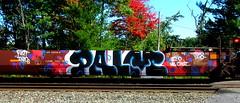 palm PHD LSD '16 (timetomakethepasta) Tags: palm phd lsd palmr fart znad rip ms choi freight train graffiti art intermodal aok