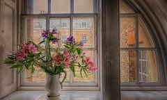 Alstroemeria and Jug (Jeannie Debs) Tags: alstroemeria peruvianlily nationaltrust flowers window 18thcentury mansion grand historical architecture jug wednesday windowwednesdays