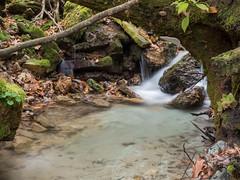 P1150113 (TallGrass-IA) Tags: edgewood iowa unitedstates us panasonic g6 1235 lumix micro43 microfourthirds waterfalls longexposure hiking outdoor nature moss