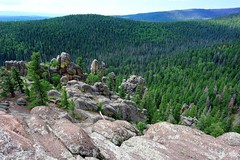 Mount Baldy Wilderness (SVALDVARD) Tags: wilderness svaldvard svaldvardink josegabriel josegabrielmartinez arizona pine forest landscape
