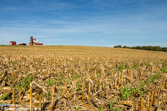 Fall (Nathan Jurgensen) Tags: fall farm harvest corn missouri rural barn silo grain