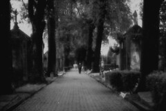 11 (DatFish1) Tags: bw white black cemetery path walk gray
