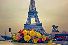 A crazy lover's dream.. (wessoufi) Tags: flowers red tower love colors yellow him vivid marriage happiness eiffel