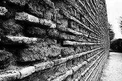 saremo noi che abbiamo nella testa..... (leosagnotti) Tags: brick wall mura mattoni