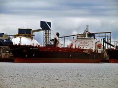 BW Leopard (Nicober!!!) Tags: bw canada river ship quebec leopard stlawrence oil stlaurent tanker chemical fleuve petrolier