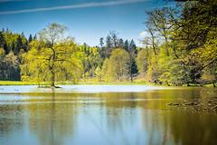 Kleiner See (thomaskappel) Tags: see kleiner