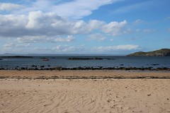 2016 - 3.5.16 North Berwick (58) (marie137) Tags: trees sea sky people sun fish beach dogs water weather architecture landscape movement sand collie rocks labrador play ben chips splash berwick murphy marie137